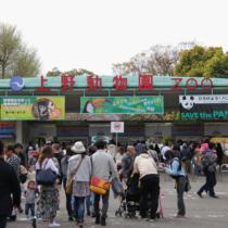 上野動物園の楽しみ方とは