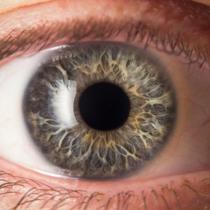 瞳孔がひらくことは本当にあるのだろうか