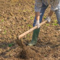 土づくりの仕方とは