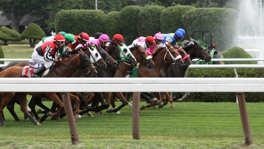 代わりに挙げておきたい馬が、ライジングリーズン(牝3・奥村厩舎)です