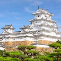 お城とその周辺で開催される桜まつりをご紹介します