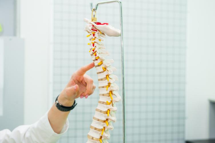 最近、身長が縮んだと感じたら、それは脊柱圧迫骨折が原因かもしれません