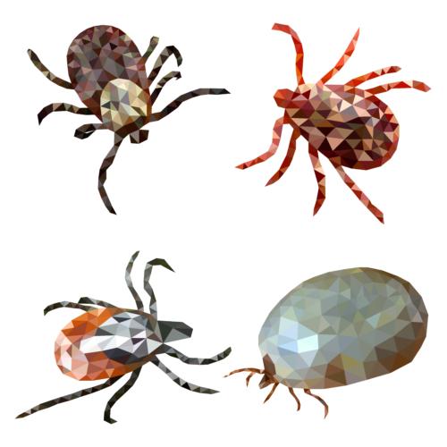 粉ものにつきやすい虫と保存方法