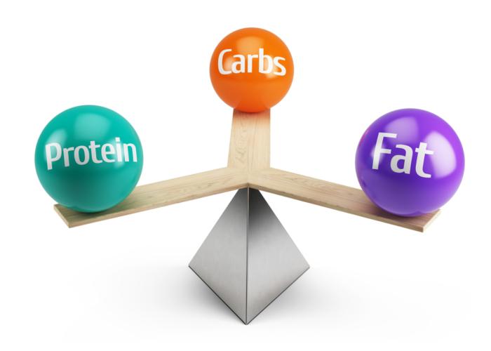 タンパク質優先の食事こそ太りにくい