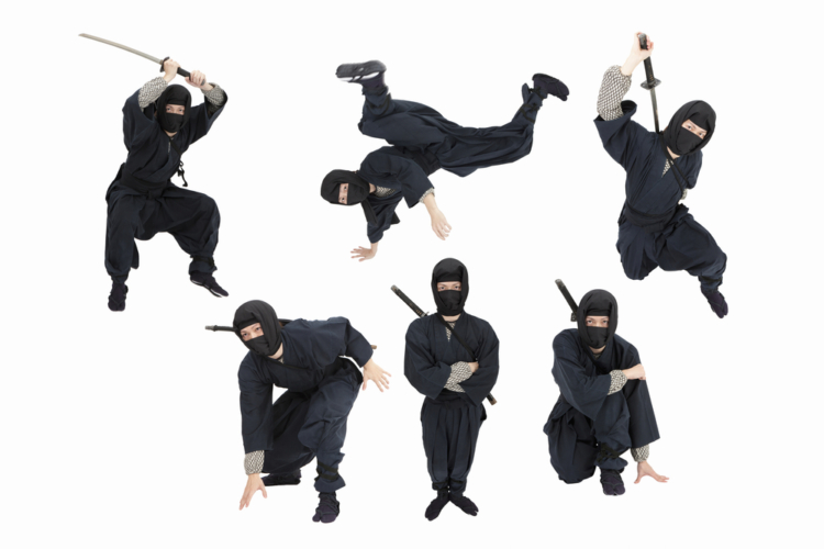 具体的な忍者の仕事は、諜報・調略・偵察・暗殺などの隠密活動全般です。