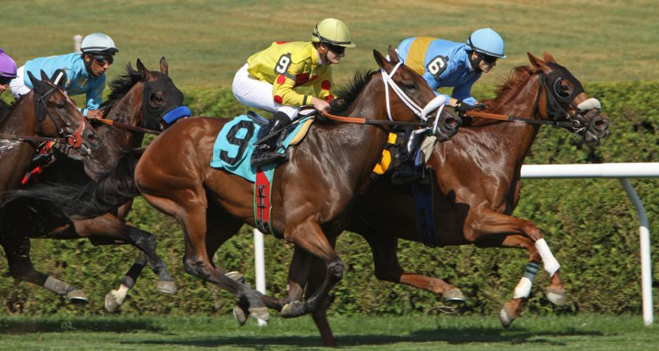 七夕賞が福島2週目になったここ4年間の成績を見ると、好走馬のほとんどが先行タイプであることがわかる。