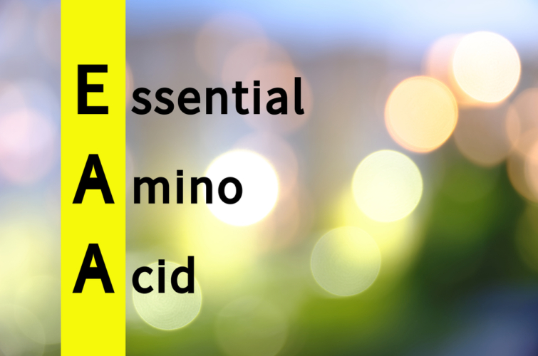 最強のアミノ酸サプリメントと言えば「EAA」