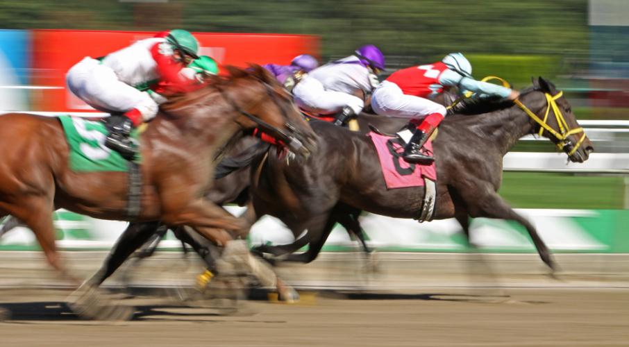 勝ち馬には歴史的名馬がズラリ