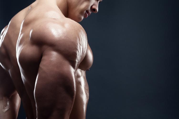最重要部位「肩」の立体感を強化