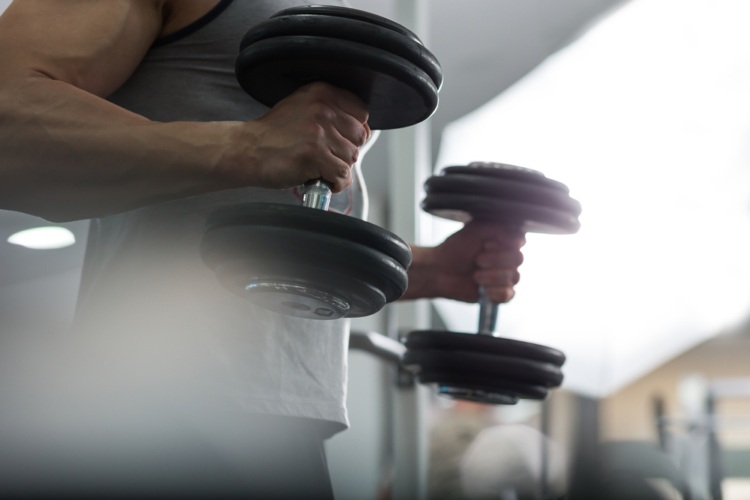 上腕の三番目の筋肉「上腕筋」を鍛える