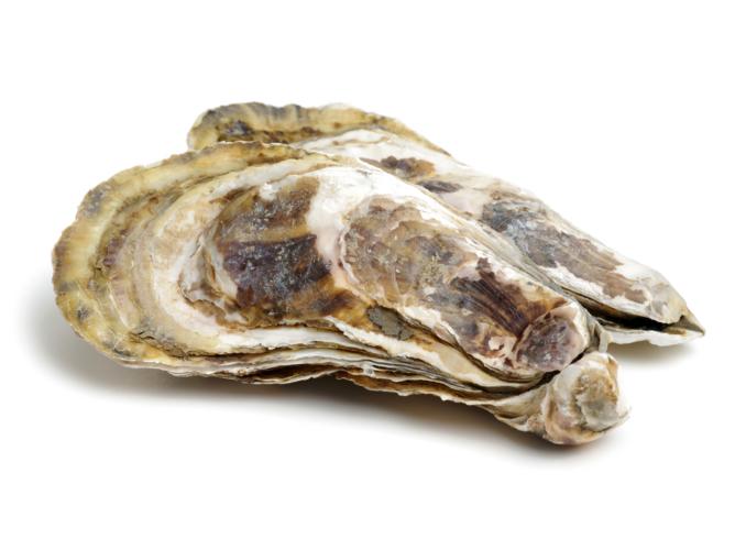 海のミルク「牡蠣」で亜鉛をゲット