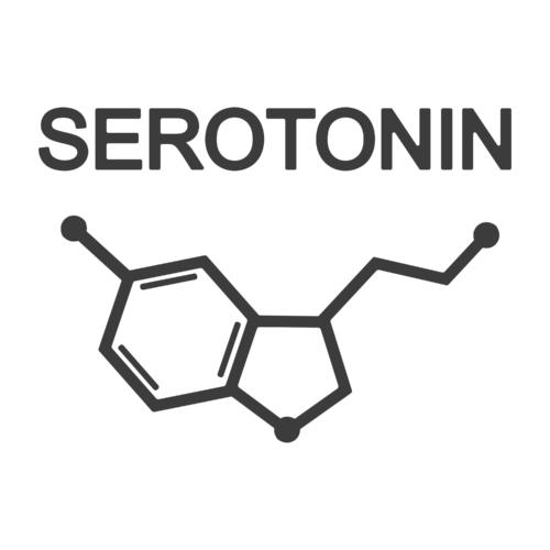セロトニンを増やす