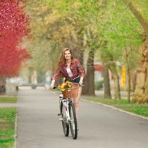 都内でサイクリング