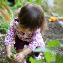家族で野菜を育てることの意味とは