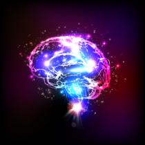 心は脳の働きの表現である