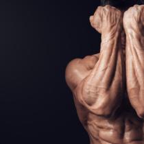 腕撓骨筋は意外と目立つ