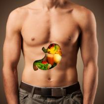 腸のコンディションは体全体に影響を及ぼします