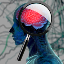 3D medical background with magnifying glass examining brain depicting alzheimers research. 3d illustration3D medical background with magnifying glass examining brain depicting alzheimers research. 3d illustration