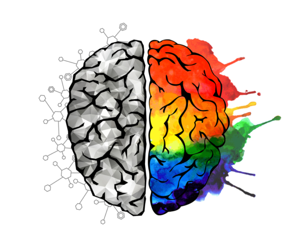 脳は使えば使うほどパワーを発揮してくれる