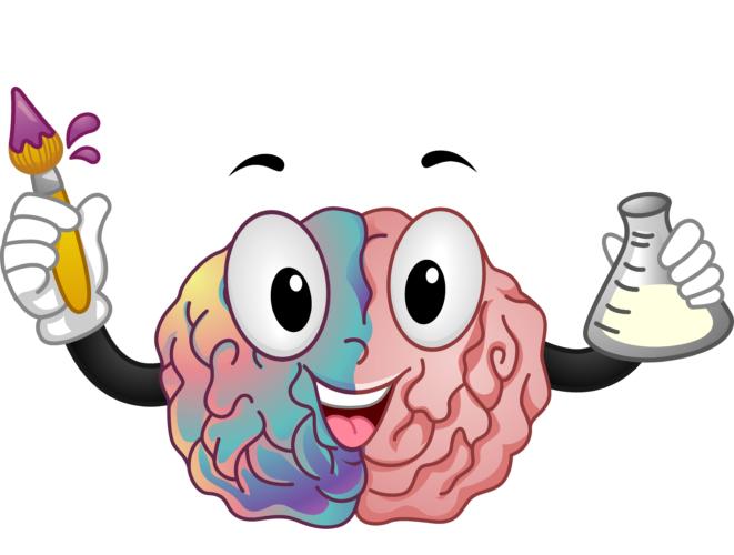 右脳のトレーニングとは