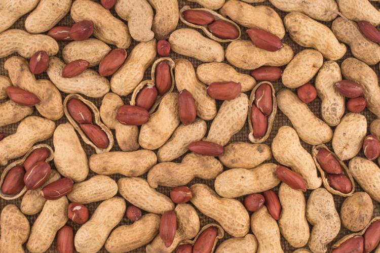 ピーナッツと落花生の違い