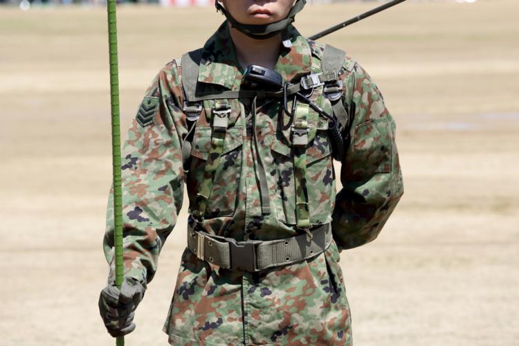 日本における海兵隊はどのようなものでしょうか。