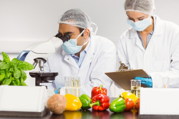 最も人間の体に悪影響を与える食べ物は特定の食べ物ではない?