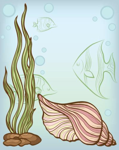 貝殻や海藻は持って帰ってはダメなのです。