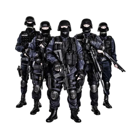 柔らかい言い方をすれば、警察活動と軍事行動の違いになってしまいます。