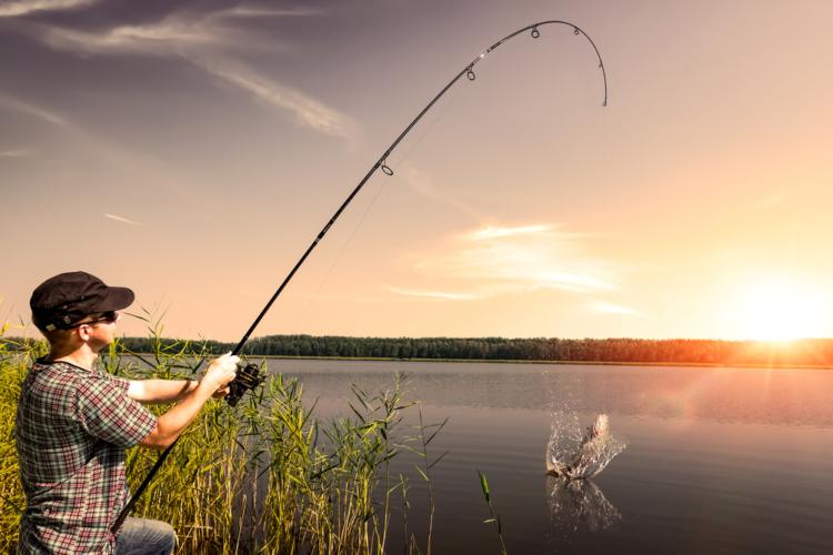 ルアーであれば魚釣りも気楽になる