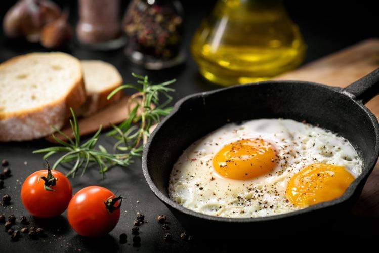 卵黄は栄養の塊