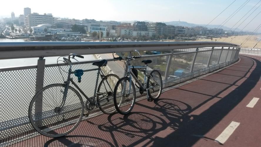 自転車(スポーツバイク)の選び方