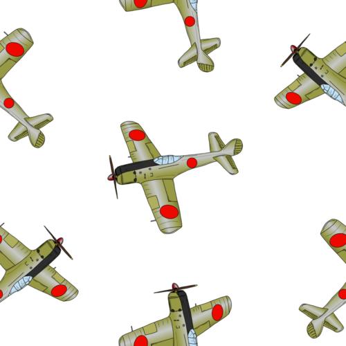 戦記に見る旧日本陸軍の戦闘機