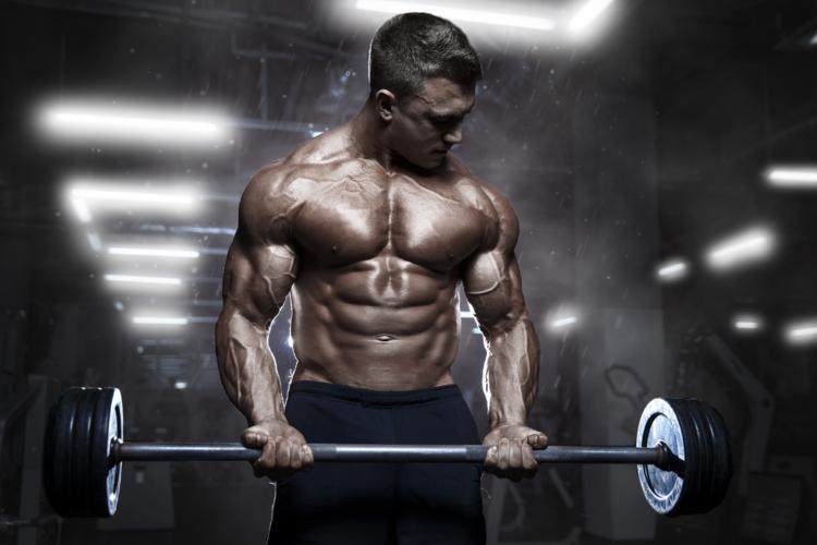 上半身の効果的筋肥大プログラム