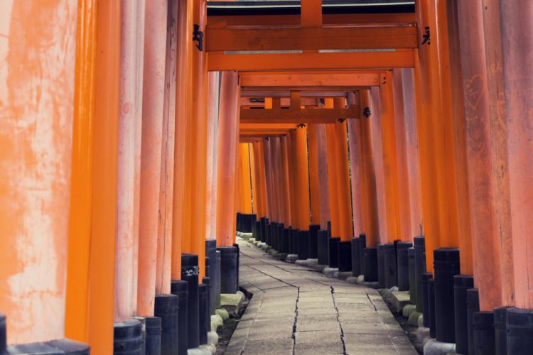 「神宮」「大社」……神社にも色々あるもの