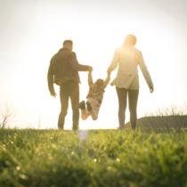 4.家事育児のスキルがない