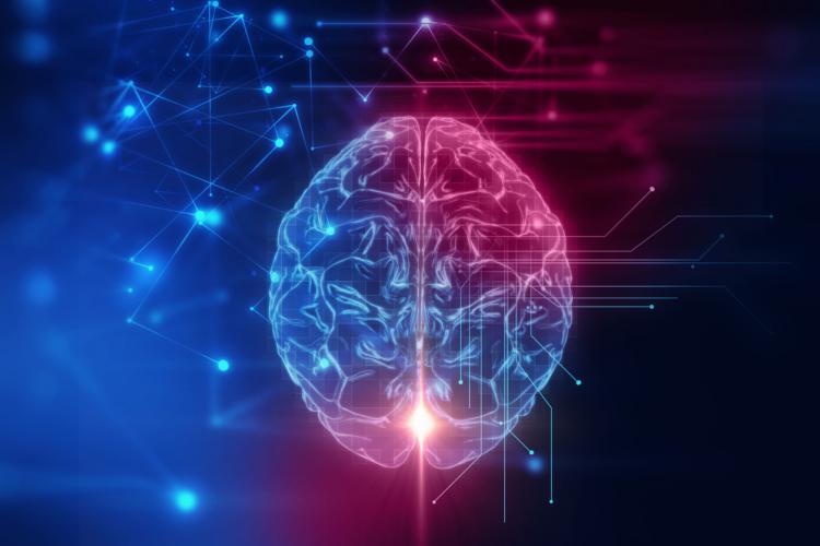 脳と心にも効く