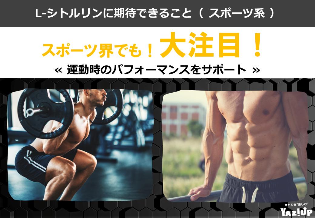 おすすめ_スポーツ系