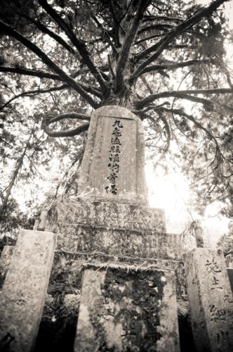 京都競馬場と戊辰役東軍戦死者埋骨地の碑――新選組の霊が慰霊碑の撤去を妨害した