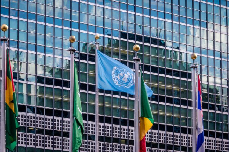 国際連合について