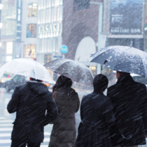Ginza, Japan - January 14, 2013: At Ginza 3 chome crossing, one of the most famous point in fashionable town Ginza. Pedestrians are waitng for green light in heavy snow. Some couples share unbrella, walk close together.