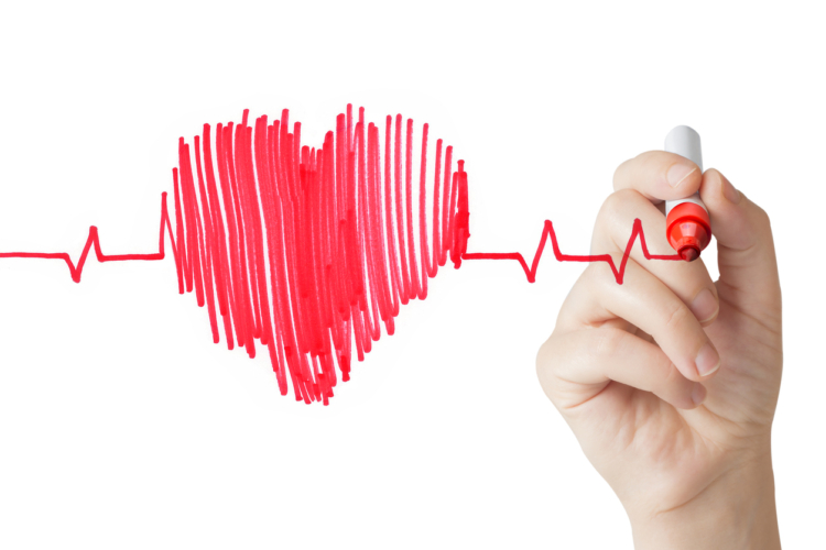 筋トレによる心筋強化のエビデンス