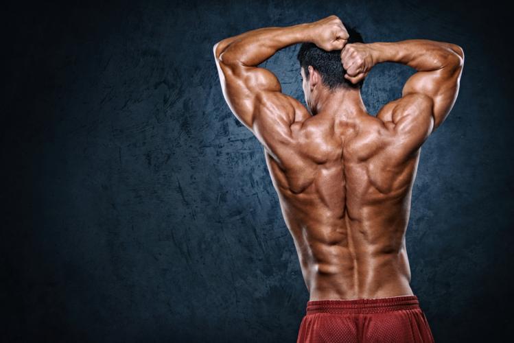 改めて背筋の重要性を伝えたい!