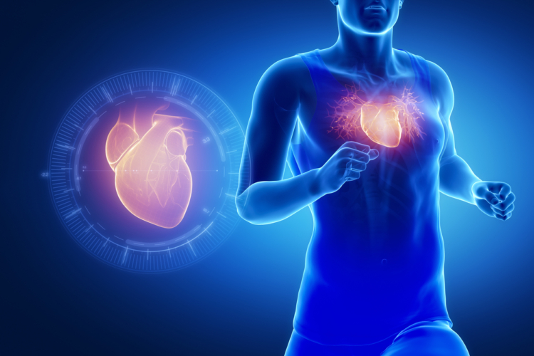 心臓の鼓動回数による人の寿命は40歳らしい