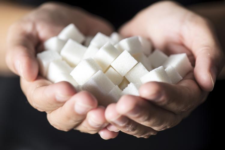 砂糖の害悪…その一部