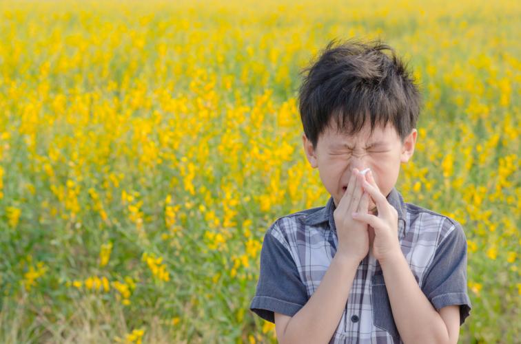 花粉の飛ぶ量が増えて花粉症の人にとってつらい季節