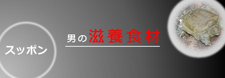マカ皇帝倫 記事内画像_スッポン