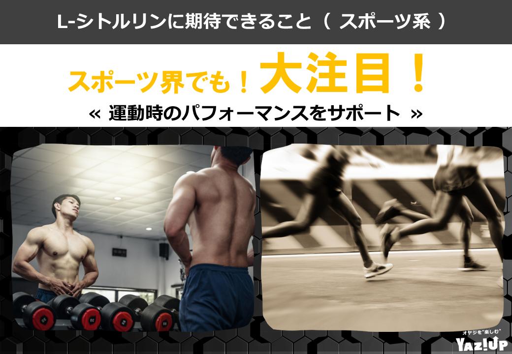 VS_スポーツ系_画像