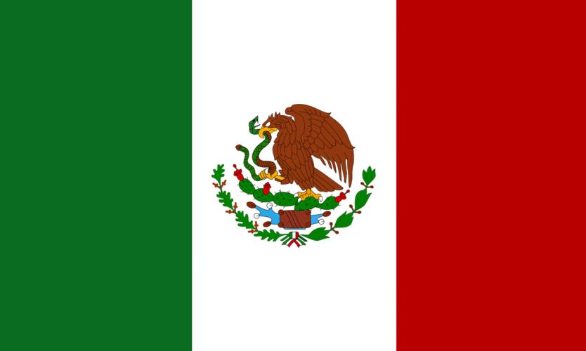 メキシコそして世界のレイジェス社