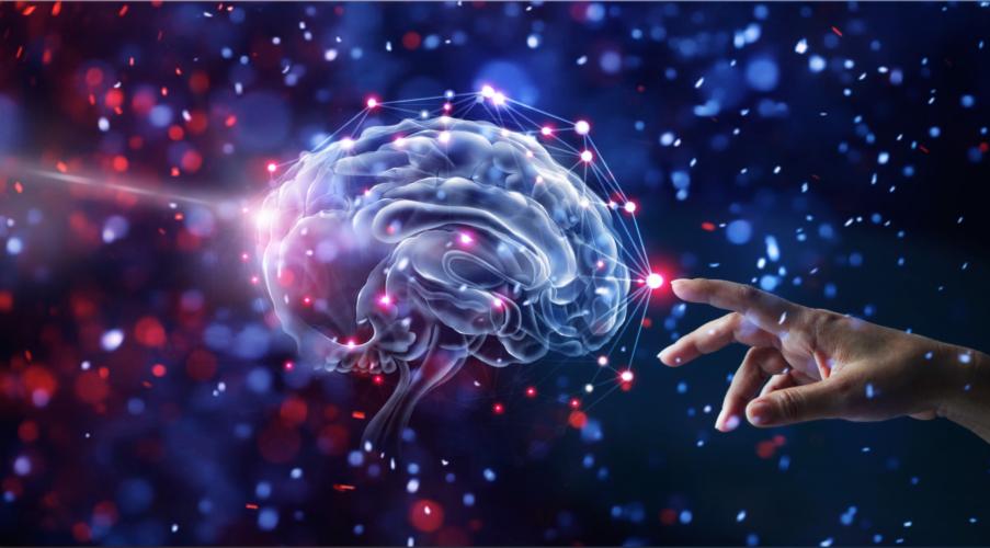 脳や神経が筋トレと関係する???
